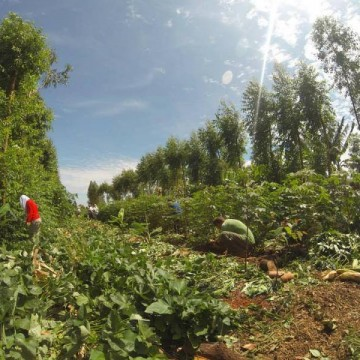 Forum | Landbouw en Natuur: 1 + 1 is meer dan 2